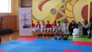 Kiev championship of  martial arts